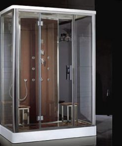 Ariel Platinum shower for two