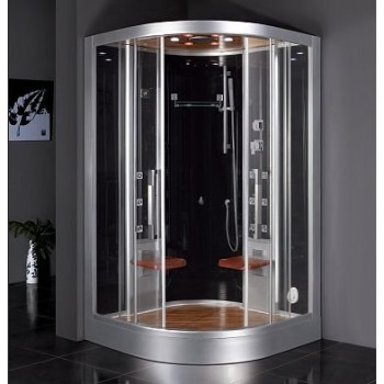 DZ962F8 2 Person Steam Shower