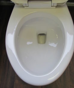 Elongated Toilet