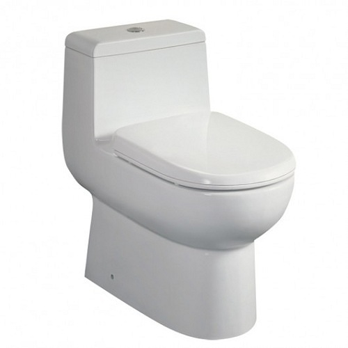 Bathroom Two Toilets In One : One piece dual flush toilet watersense toilets perfect