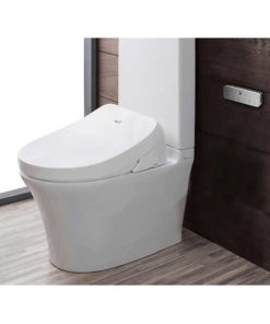 Bidet-seat-mounted-on-toilet
