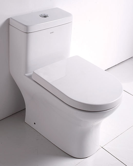 How to Choose a Good Toilet