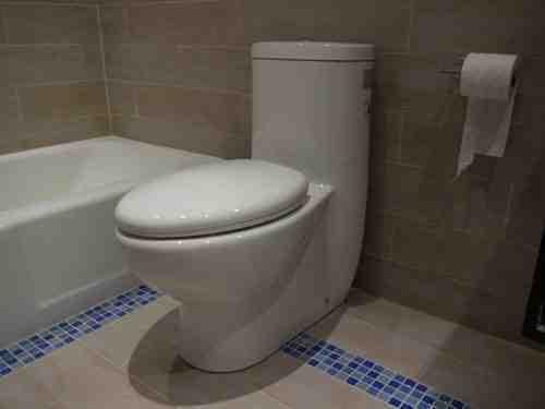 TB309 toilet Installed