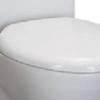 soft_closing_toilet_seat_for_eago_tb346 (1)