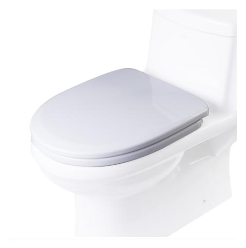 toilet seat for TB222