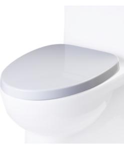 Toilet seat for TB359